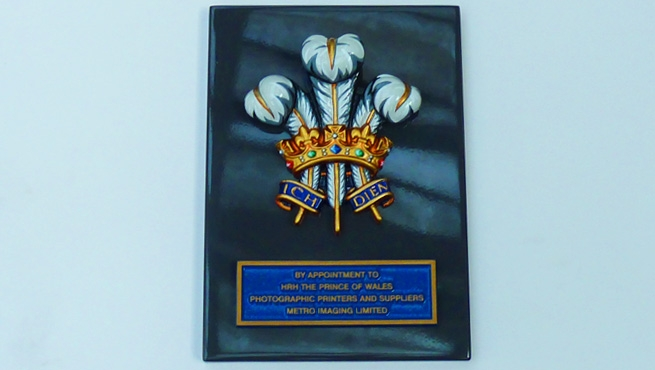 Royal Warrant Coat of Arms for Metro Imaging Limited
