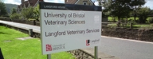 Post Mounted Aluminium Tray Sign for the University of Bristol