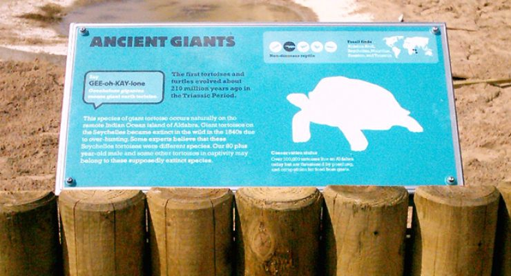Information Panel for Giant Turtles