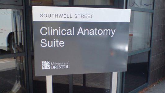 Southwell Street, Bristol - University of Bristol Clinical Anatomy Suite